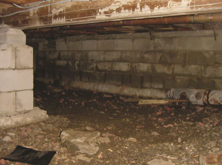 crawl spaces how mold affects your crawl space your home