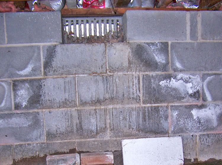 Crawl Space Vent : Mold damage in basements and crawl space michigan