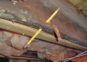 Rot Mold Damage Repair In Kalamazoo Lansing Grand